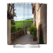 A  Small Side Street In Riquewihr Shower Curtain