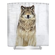 A Smile For You.. Shower Curtain