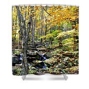 A Smokey Mountain Stream  Shower Curtain