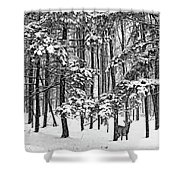 A Snowy Day Bw Shower Curtain
