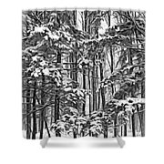 A Snowy Day Sc Shower Curtain
