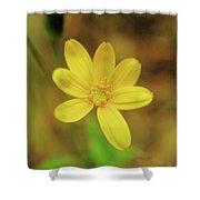 A Soft Yellow Flower  Shower Curtain