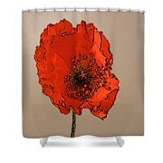 A Solitary Poppy Shower Curtain