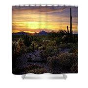 A Southern Arizona Sunset  Shower Curtain