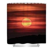 A Splash Of Orange  Shower Curtain