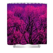 A Splash Of Purple Shower Curtain