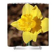 A Spring Blessing Shower Curtain