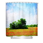 A Spring Day In Texas Shower Curtain