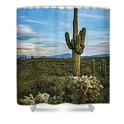 A Spring Evening In The Sonoran  Shower Curtain