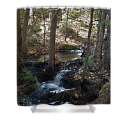 A Spring Moment Shower Curtain
