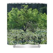 A Spring Scene In Texas. Shower Curtain
