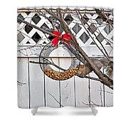 A Squirrel Christmas Shower Curtain