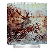 A Stag Shower Curtain
