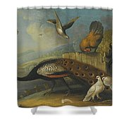 A Still Life With A Peacock, Pigeons And Chickens In A River Landscape Shower Curtain