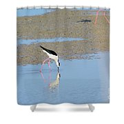 A Stilt Drinking Its Reflection Shower Curtain