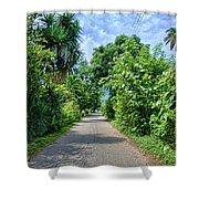 A Street Between Trees Shower Curtain
