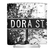 Do - A Street Sign Named Dora Shower Curtain