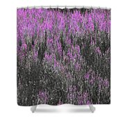 A Suggestion Of Wildflowers Shower Curtain
