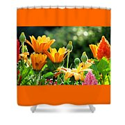A Summer Celebration Shower Curtain