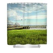 A Summer Evening In Charleston Shower Curtain