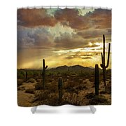 A Summer Evening In The Sonoran  Shower Curtain