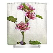 A Summer Splash Of Color Shower Curtain