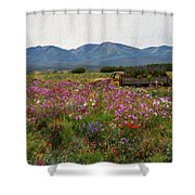 A Sunday Afternoon Drive Shower Curtain