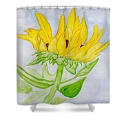 A Sunflower Blessing Shower Curtain