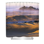 A Sunny Morning Shower Curtain