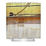 A Sunny Wall Shower Curtain