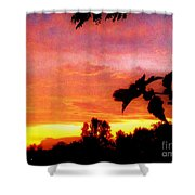 A Sunset With A Different Mood Shower Curtain