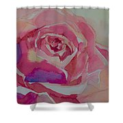 A Tale Of A Rose  Shower Curtain