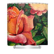 A Tale Of Two Roses Shower Curtain