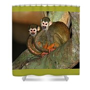 A Tale Of Two Tails Shower Curtain