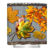 A Taste Of Fall Shower Curtain