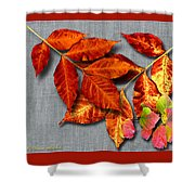 A Taste Of Fall II Shower Curtain