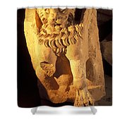 A Temple Winged Lion In The Petra Shower Curtain