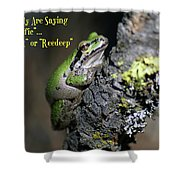 A Terrific Frog #1 Shower Curtain