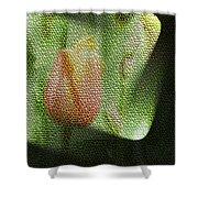 A Tiled Tullip  Shower Curtain