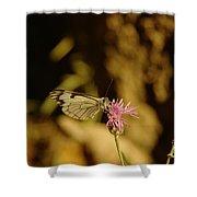 A Tilting Butterfly  Shower Curtain