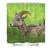 A Time To Rest Shower Curtain