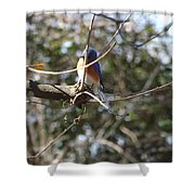 A Touch Of Blue 5 Shower Curtain