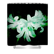 A Touch Of Green On The Lilies Shower Curtain