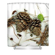 A Touch Of Moss Shower Curtain