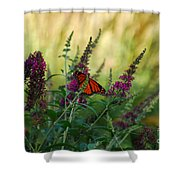 A Touch Of Orange Shower Curtain