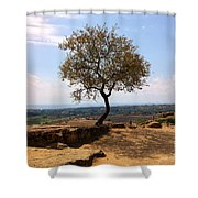A Tree And A Rock Shower Curtain