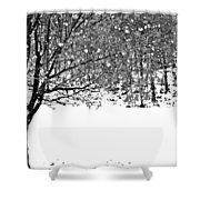 A Tree In Snowy Winter Shower Curtain
