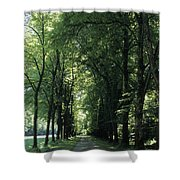 A Tree Lined Path Leads To Mad King Shower Curtain