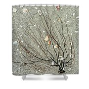 A Tree On The Beach - Sea Weed And Shells Shower Curtain