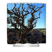 A Tree On The Edge Shower Curtain